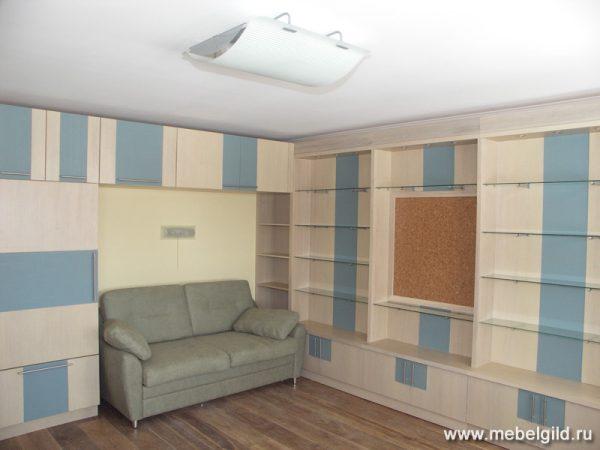 Мебель для уютной библиотеки (коттедж в Апрелевке)